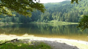 lake-123705_1920